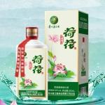 盧江龍酒荷花-500ml